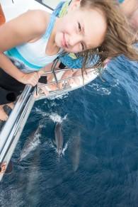 whale shark tour-104
